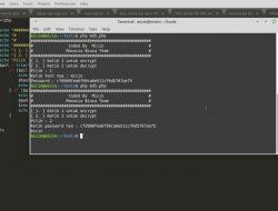 Tools MD5 Decrypt Password
