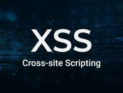 ratusan payload XSS Attack -Vulnerability Payload List